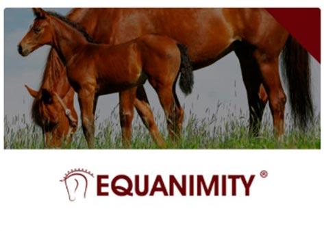 Equanimity Chemie